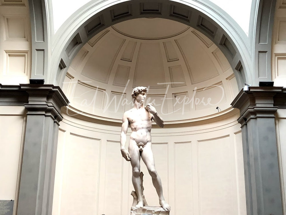 accademia statue of david.jpg