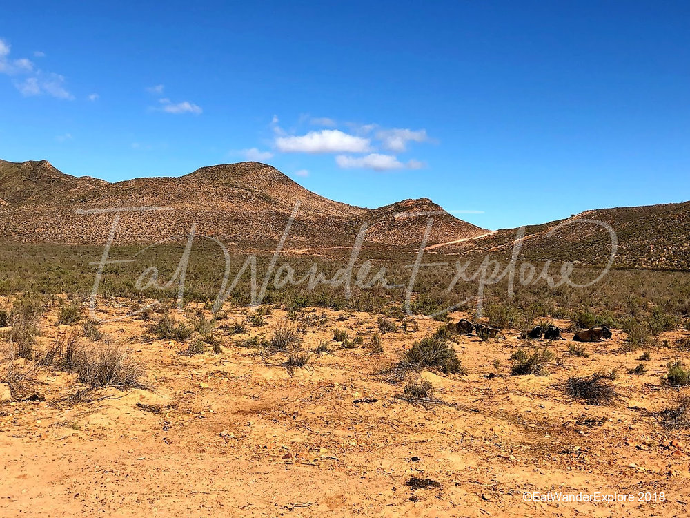 southafrica14.jpg