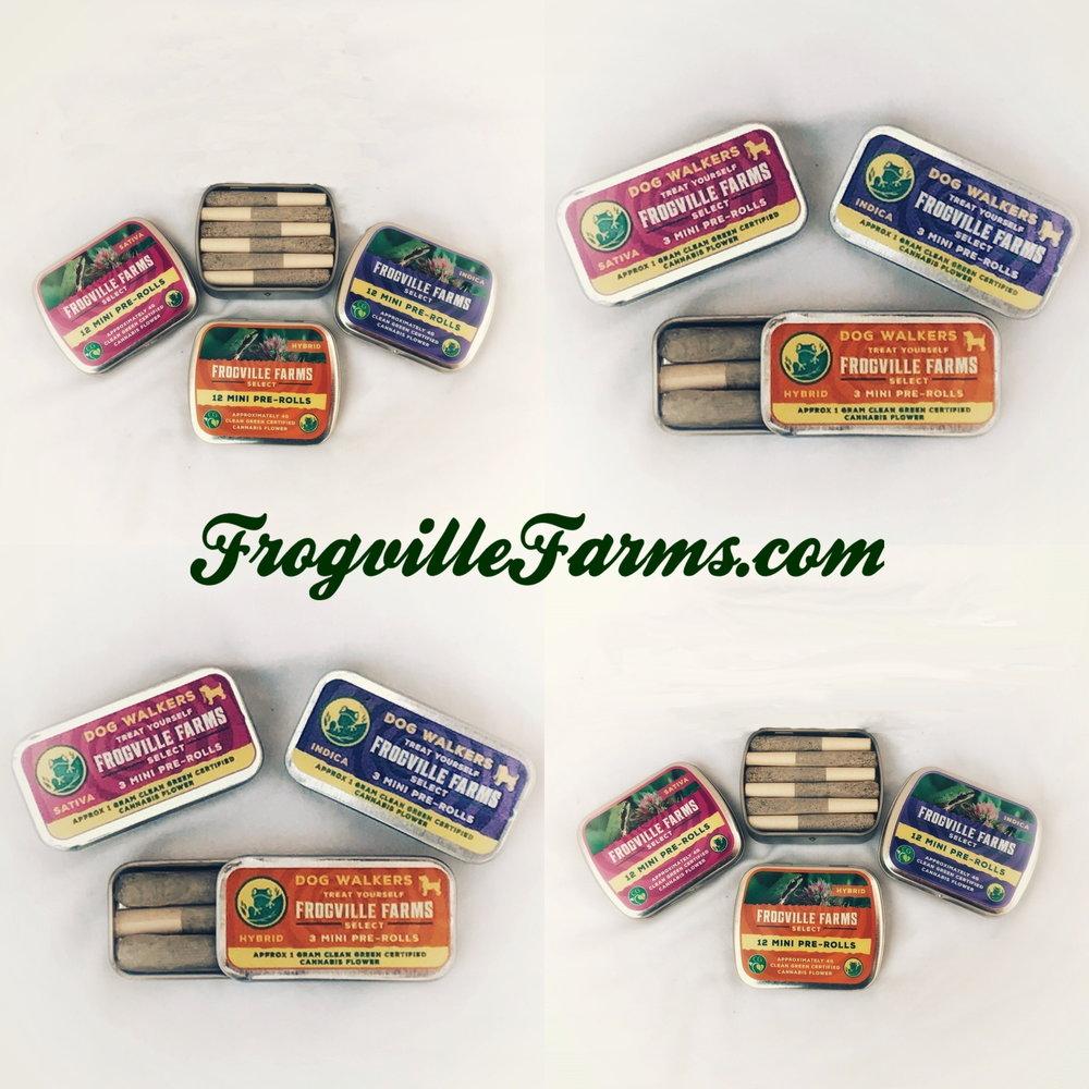 frogville minis dot com.JPG