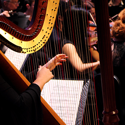 BSO-website_harp.jpg