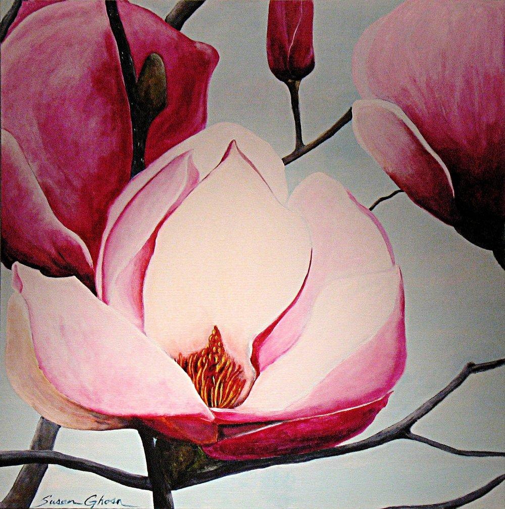 """Pink Magnolias"""