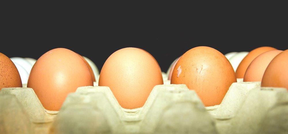 eieren.jpeg