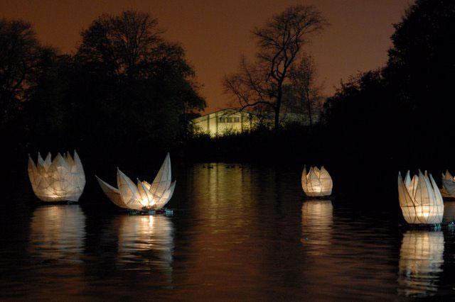 Diwali Festival Lanterns