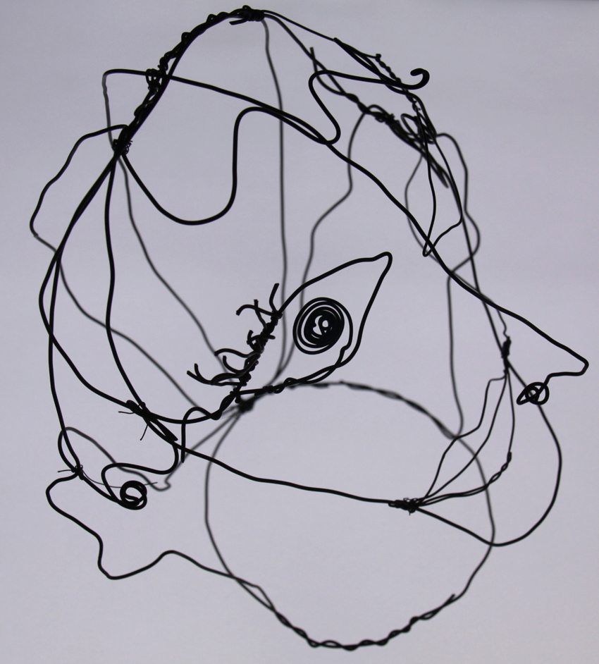 Wire portrait