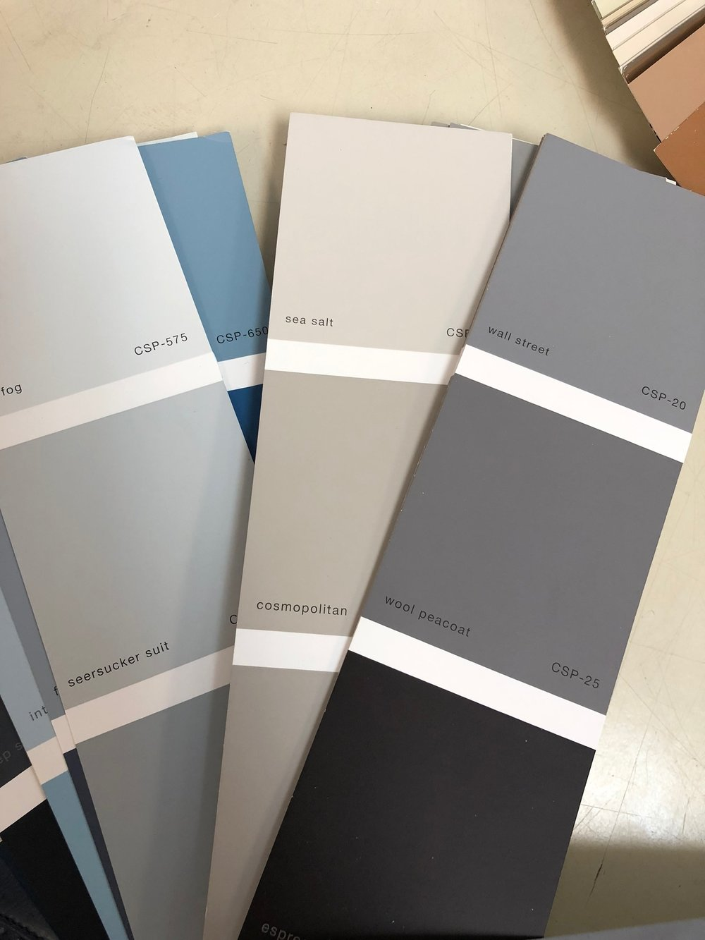 """Our color story. Check out the yoga below to see """"sea salt"""" in action. It's the """"run color"""" in most main areas."""