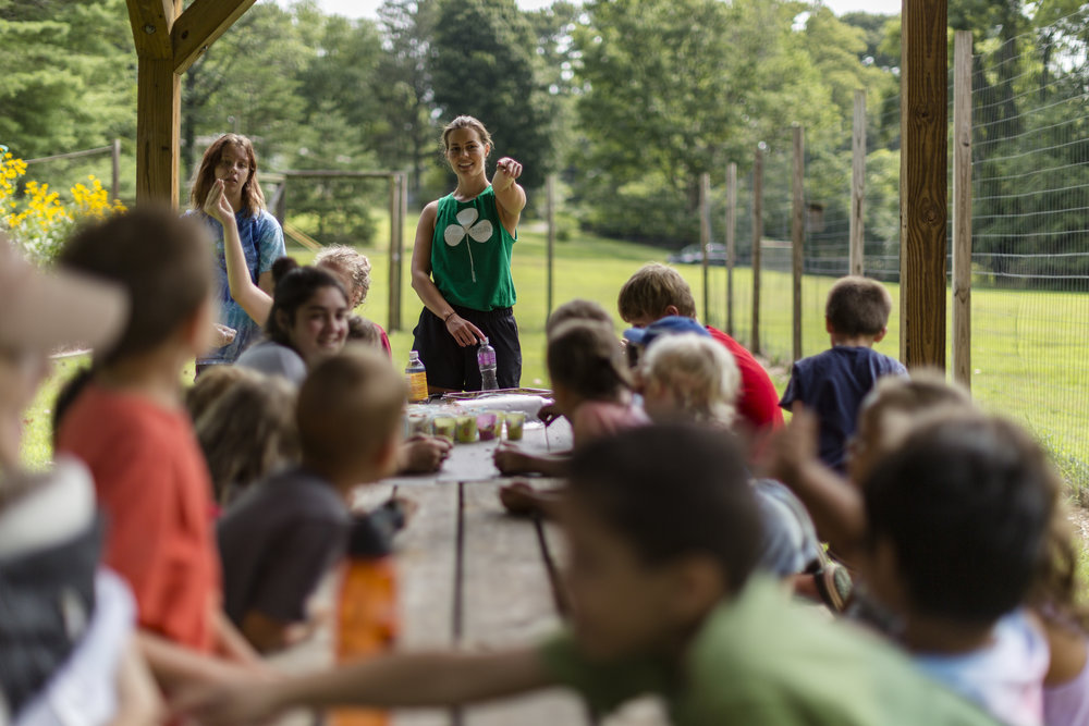 campers sit to learn about their harvest