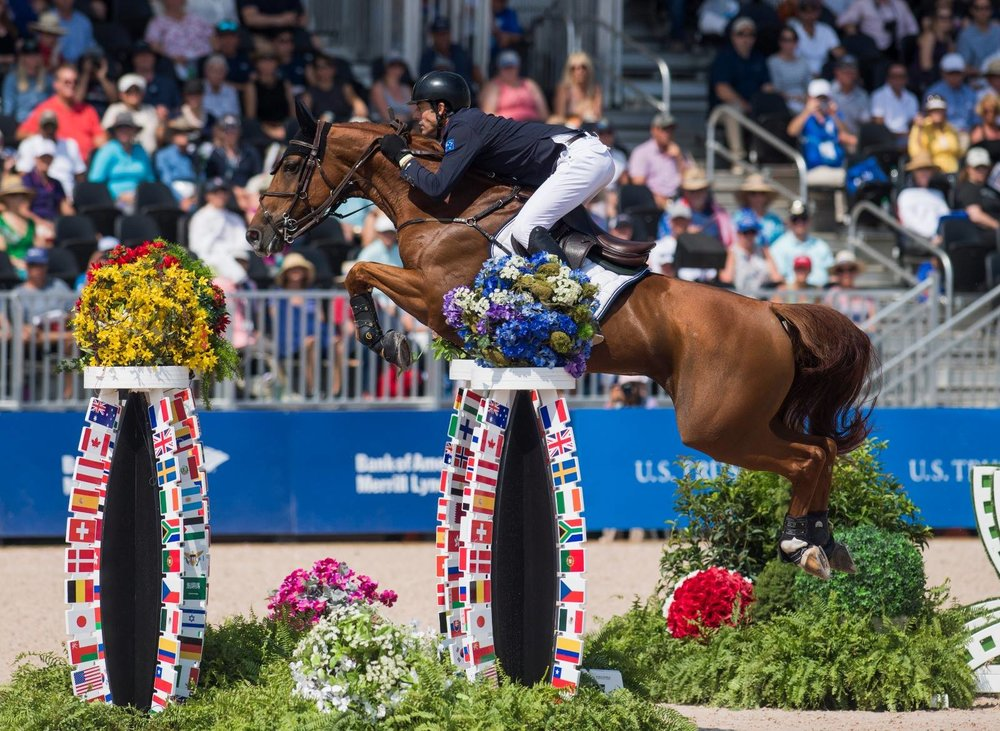 Blue Movie & Rowan at the World Equestrian Games in Tryon, 2018