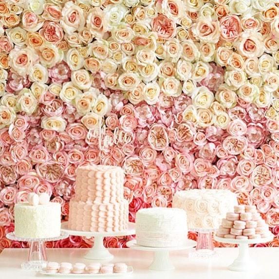 cake wall.jpg