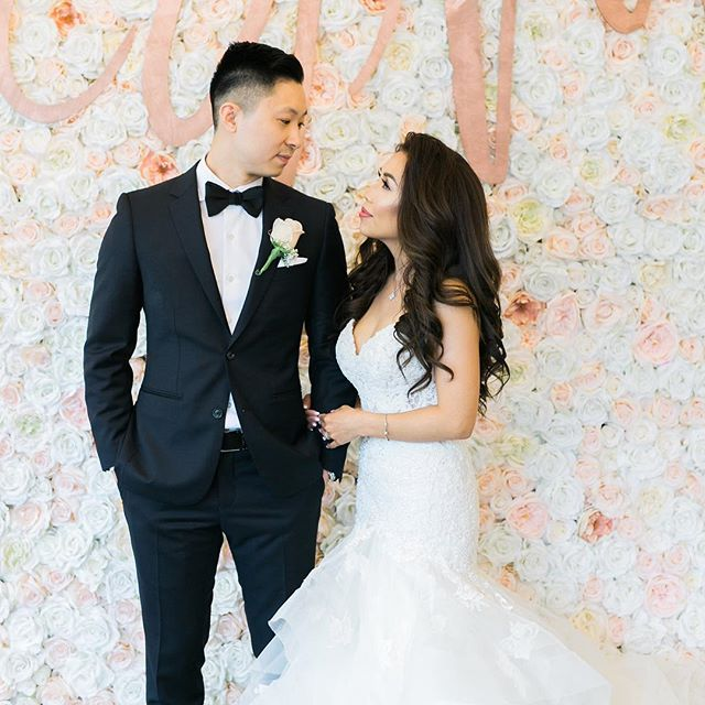 Just one look 💍 #flowerwall #flowerwallvancouver #flowerwallbackdrop #flowerwallrental #blush #blushwedding #blushflowerwall #vancouverwedding