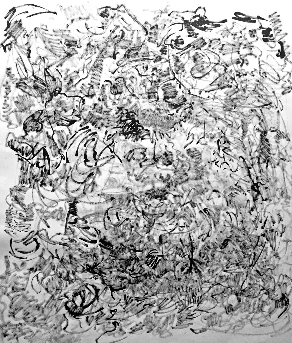 Entanglement: Trial 0  , 2016-2017; ink on paper; 48 x 36 in.