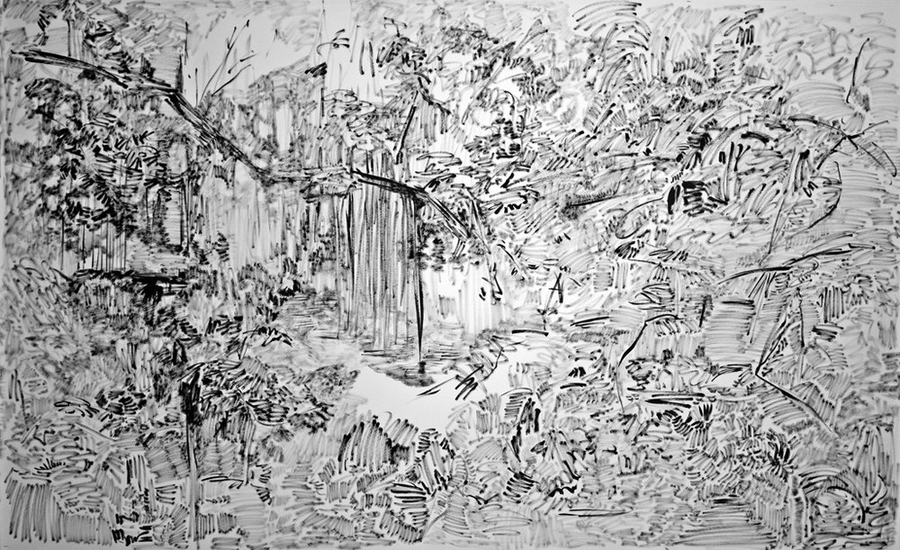 The Hidden Dimension and Other Observations No. 133  , 2016-2017; ink on paper; 60x96 in.