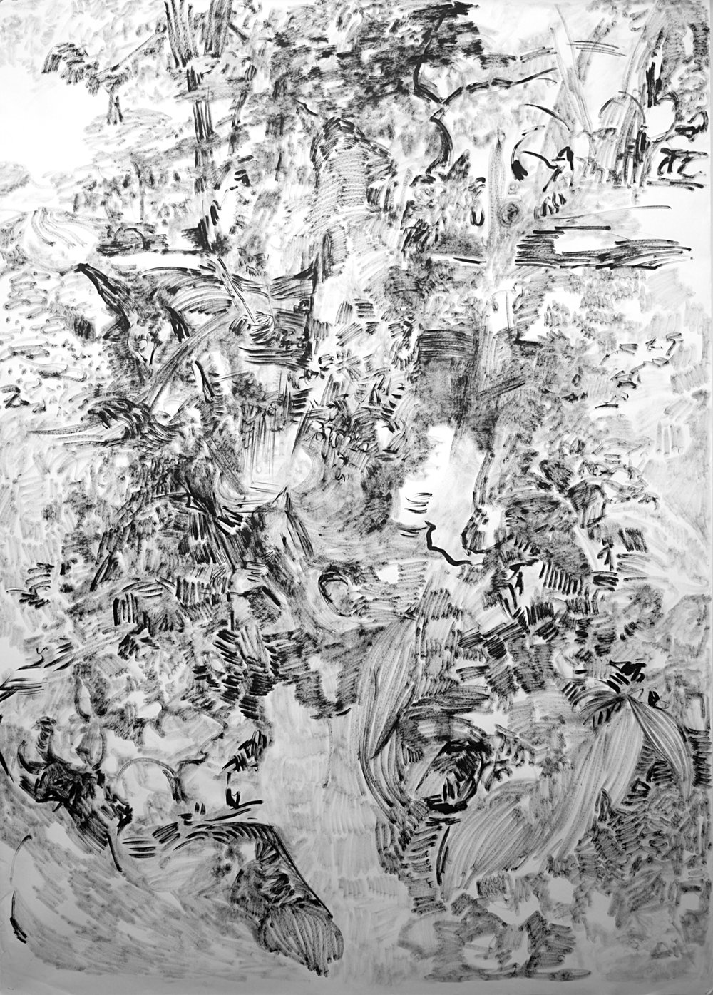 """The Hidden Dimension and Other observations No.158 , 2017, Ink on paper, 60""""x84"""""""