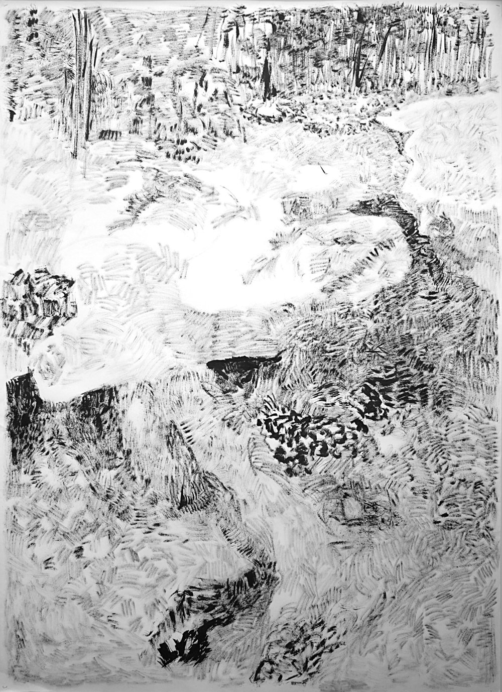 """The Hidden Dimension and Other observations No.159 , 2017, Ink on paper, 60""""x83"""""""