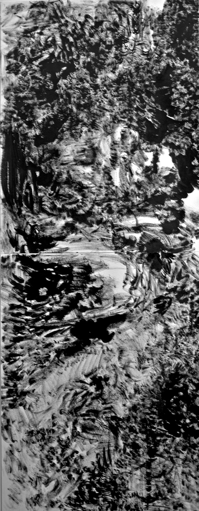 "The Hidden Dimension and Other observations No.171, 2016, Ink on paper, 48""x18"""""