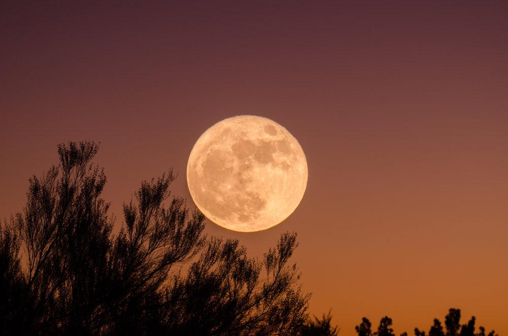 Summer Solstice Moon