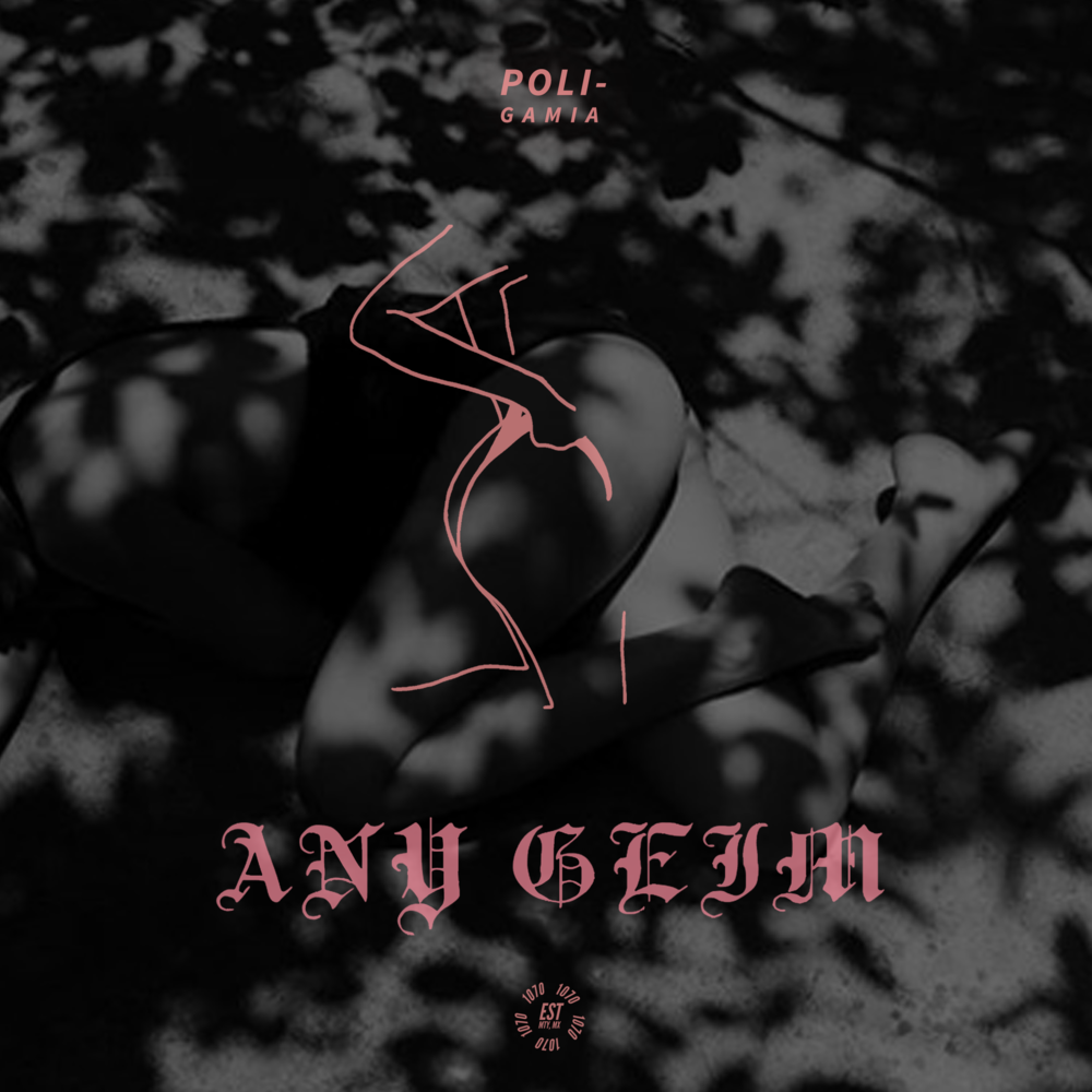 Any Geim - Poli   The queen of the alternative perreo movement in Mexico, Any Geim,with her first single ¨Poli¨ mixes latin urban genres trying to create a unique sound driven by her own sexual freedom.