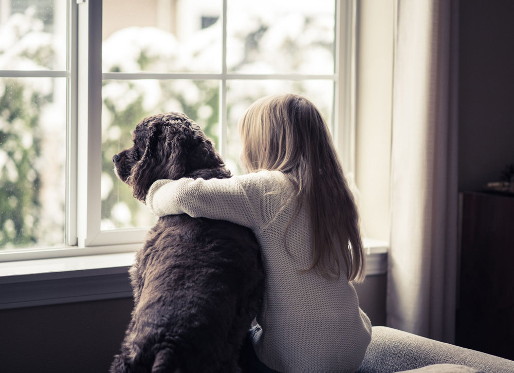 girl_dog_window1200.jpg