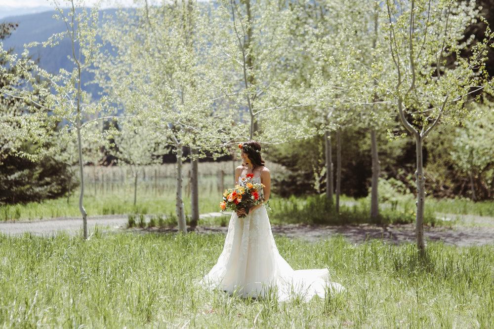bride-groom-26.jpg