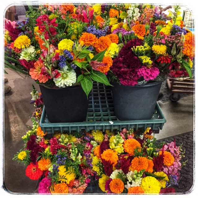 Locally grown Mixed Flower bouquets