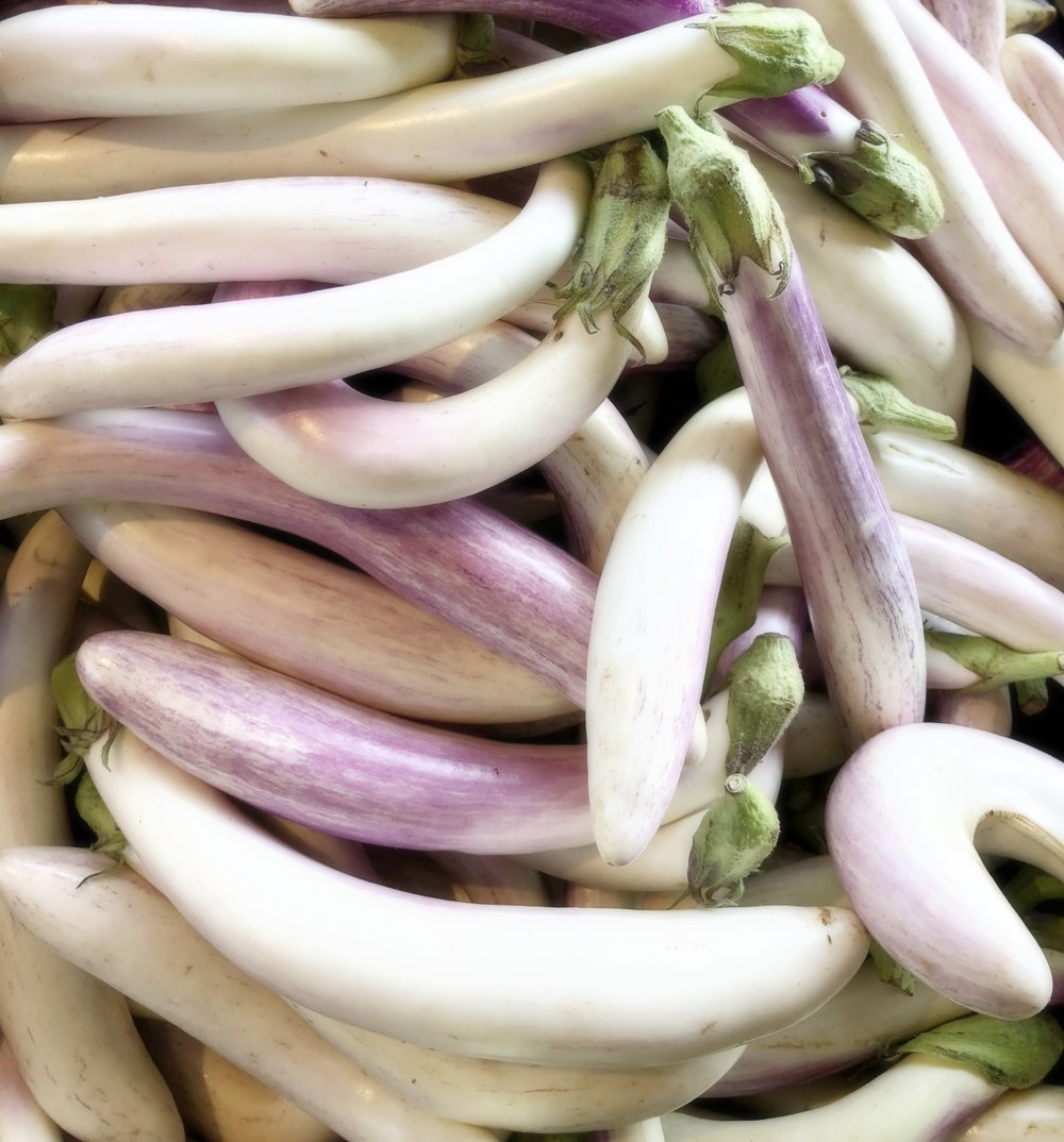 Locally-grown white eggplant