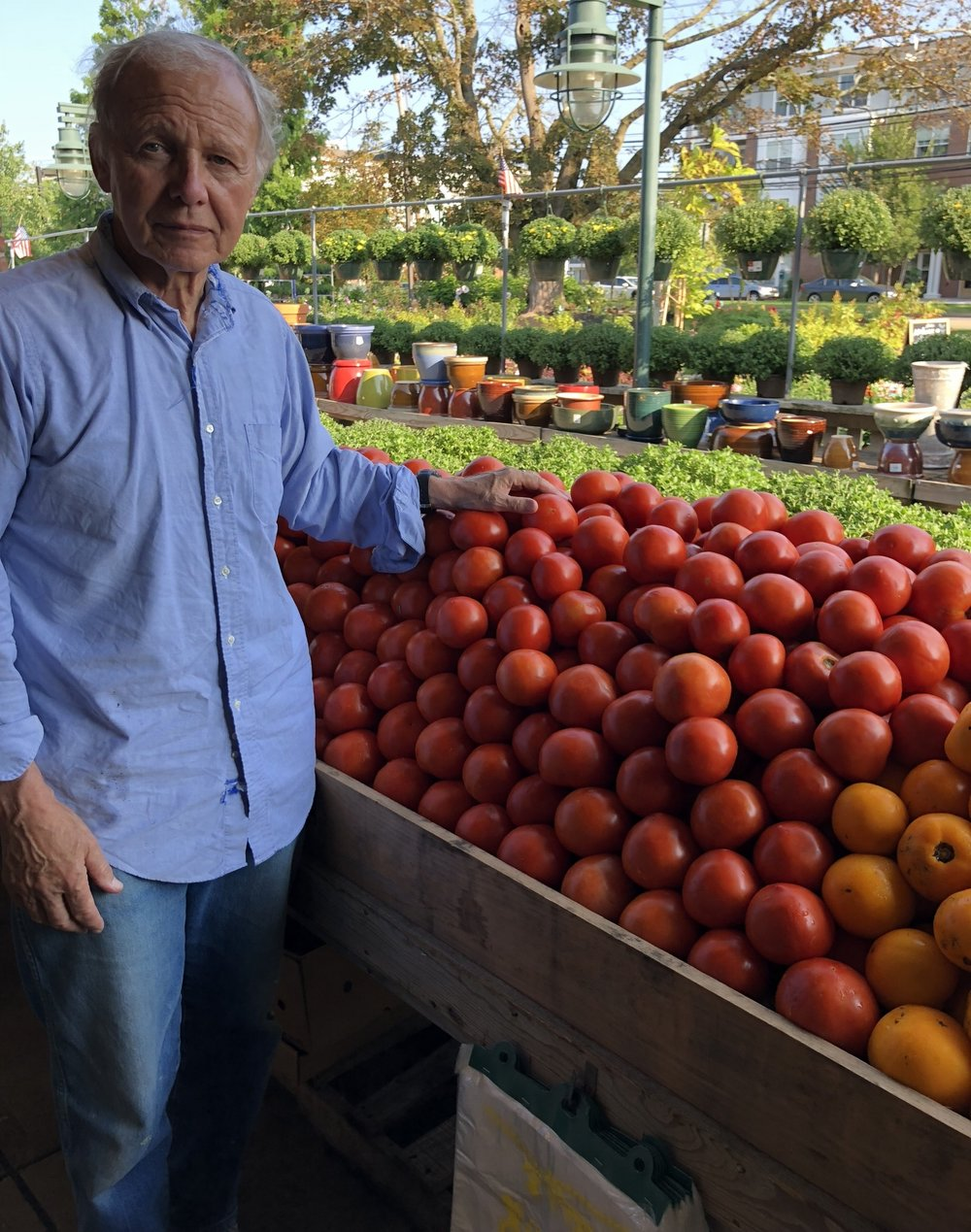 Tony Russo and the local tomatoes (that should be the name of a rock band!)