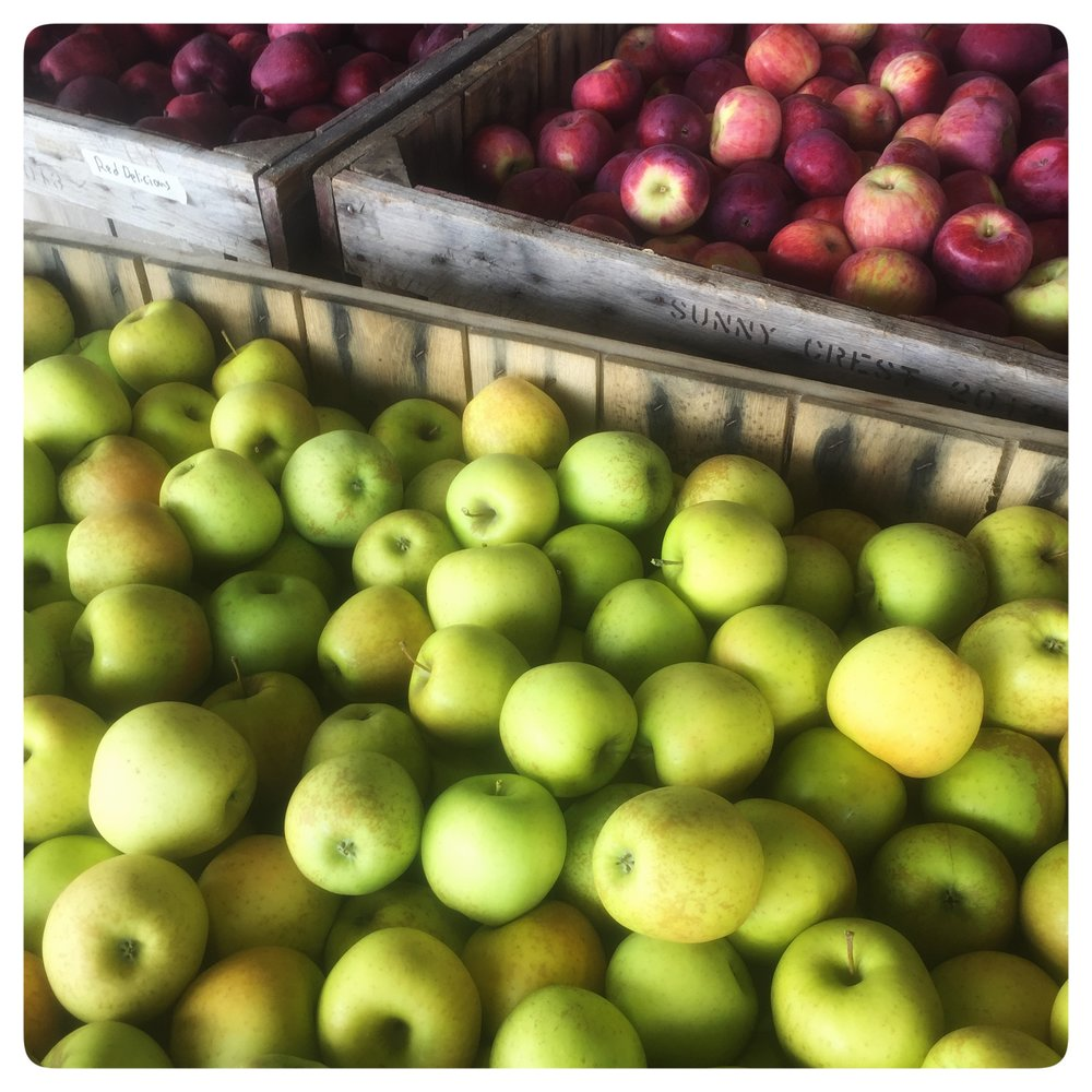 A selection of locally grown apples at Russo's!