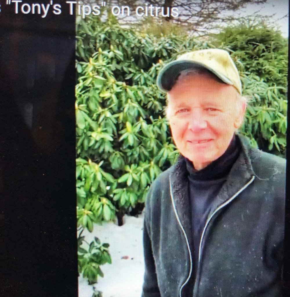 """Watch """"Tony's Tips"""" to know everything about produce, plants and more!"""