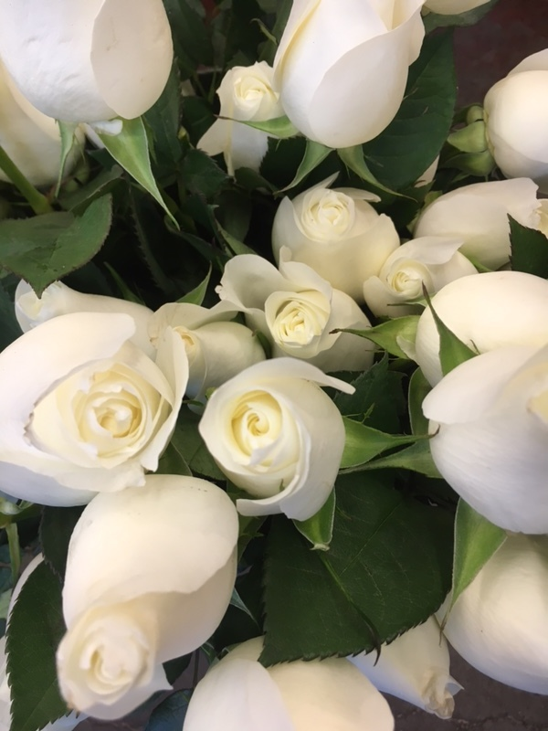 White roses for your Valentine's Day sweetie.