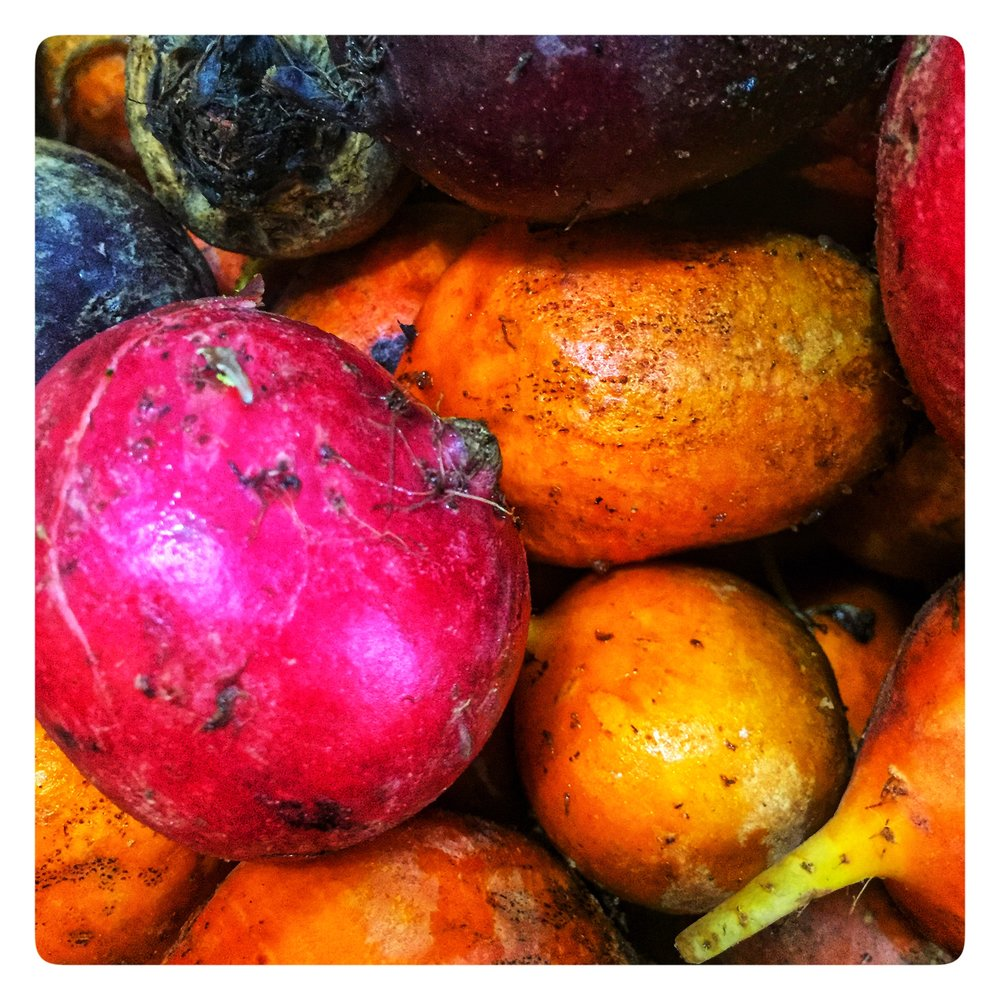 organic local beets - on special this week!