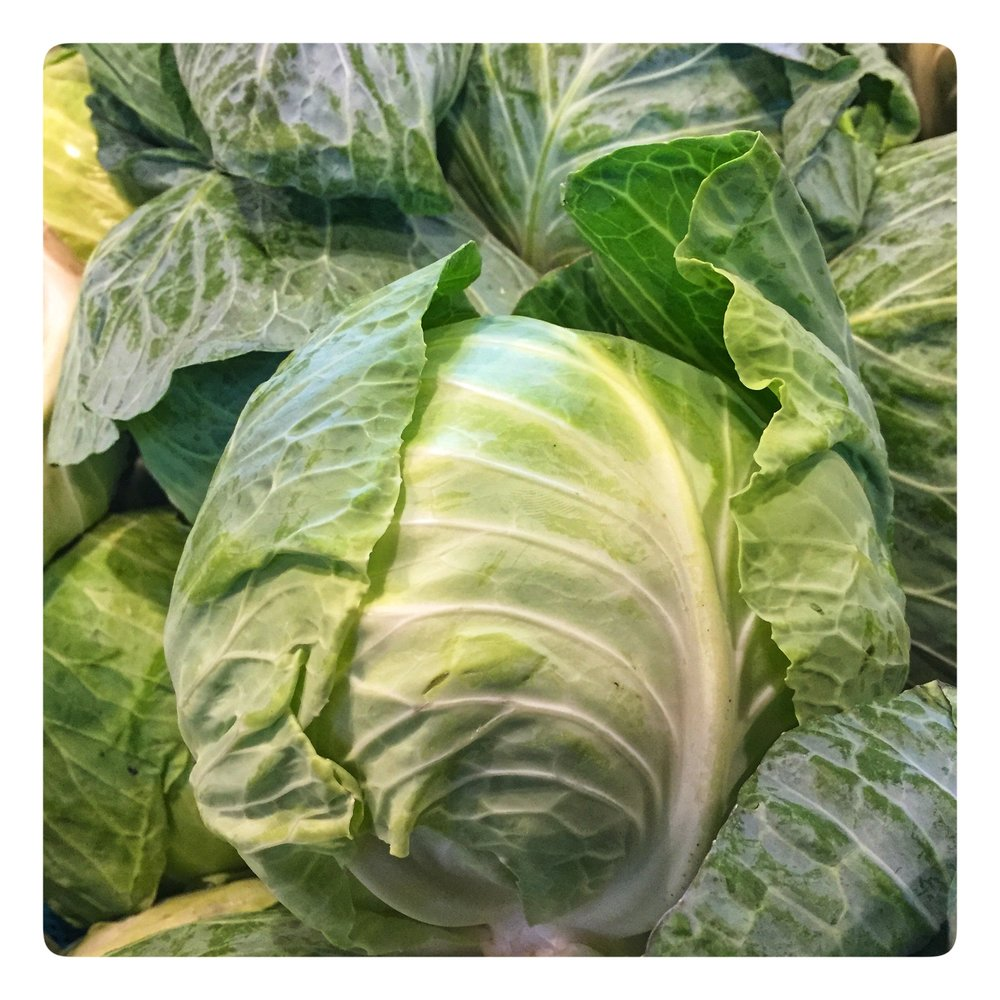 Fresh cut Georgia cabbage on special for St. Patrick's Day: $.49 lb.