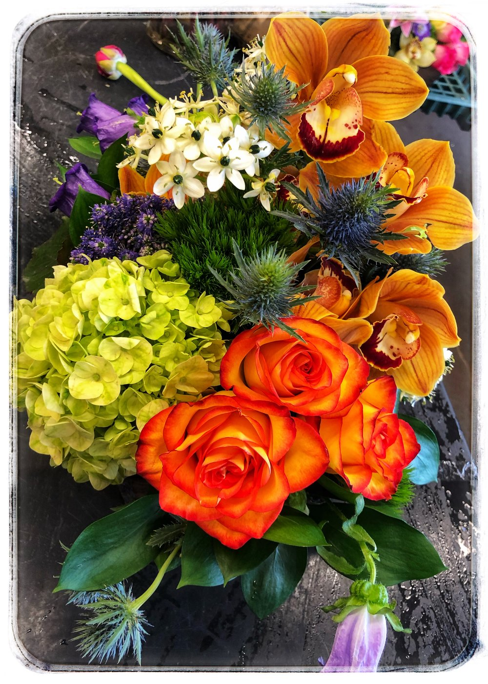 Colorful arrangements with orange orchids and  orange roses to greet Spring.
