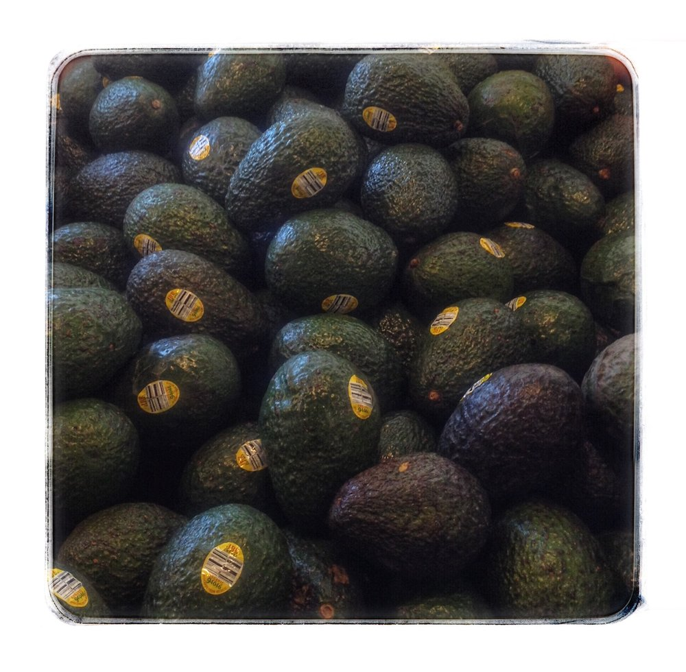 Organic avocados on Special this week at Russo's.