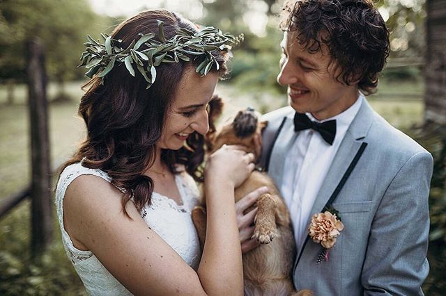 Belly rubs and wedding rings seem to go together perfecty! 🐶😍 wedding venue: @orehovgaj  wedding planner: @_wedding_hills_  #weddingplanneritaly #destinationphotographer #ukwedding #letselope #elopementwedding #bridetobe2019 #weddinggoals #wildloveadventures #dirtybootsandmessyhair #porocnifotograf #porokabo