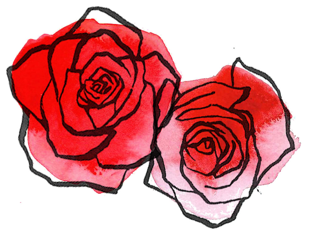 Image-Drawn-Red-Rose.jpg