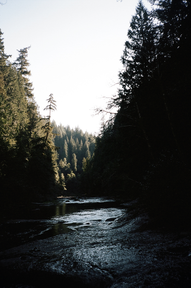 downriver.jpg