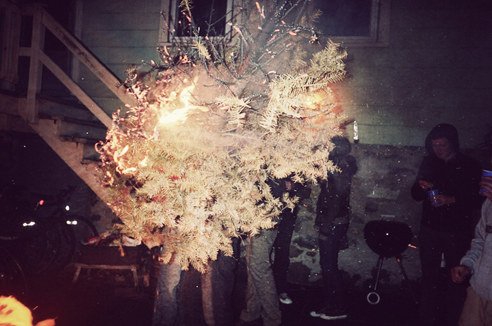 treefire.jpg