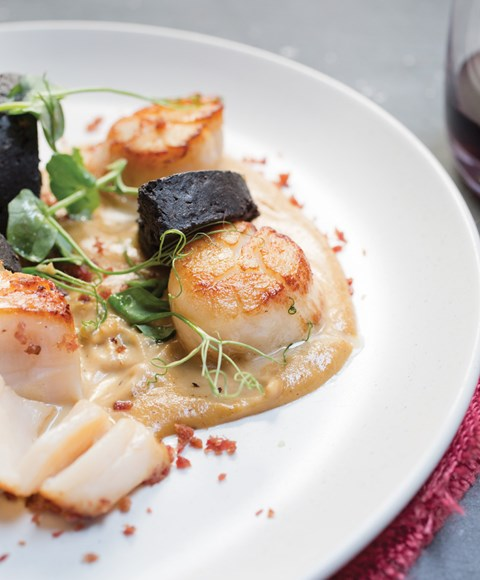 gamba_scallops-black-pudding_50a4708-web (1) (1).jpg