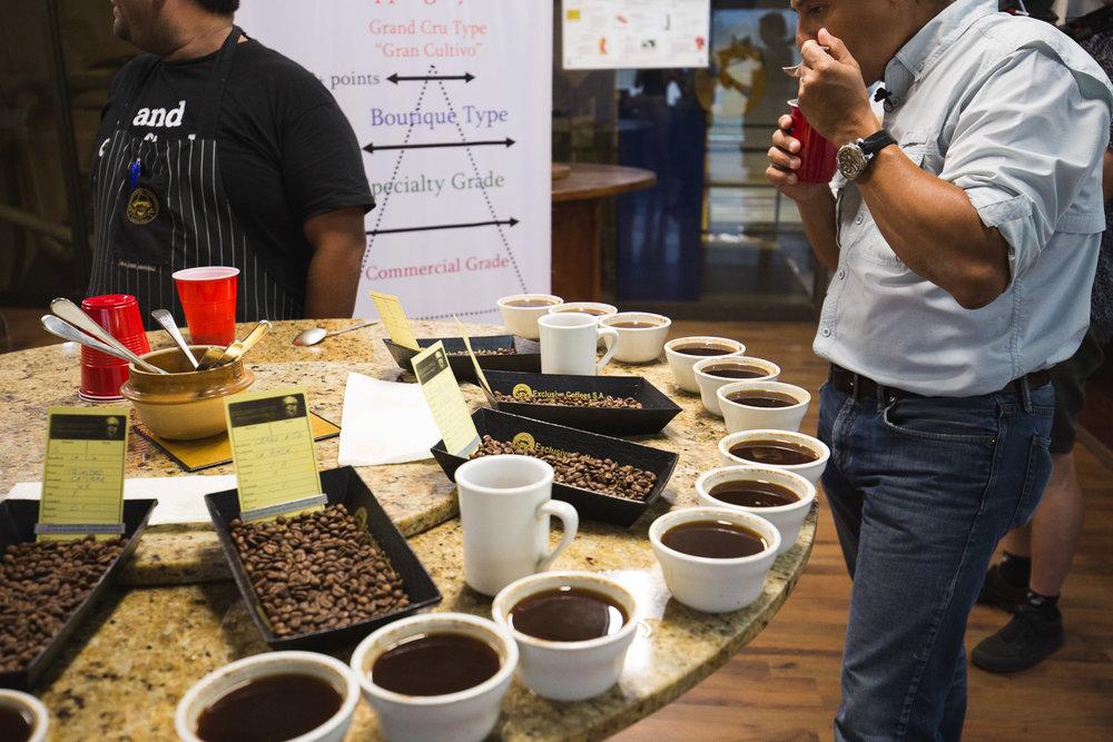 - «Nous faisons des essais, nous goûtons, nous recommençons, explique Nicholas Ladouceur. C'est une étape difficile, parce qu'on peut trop torréfier et faire sortir des saveurs indésirables. Par exemple, un café trop brûlé va perdre son sucre et devenir trop amer. Et si on souhaite conserver le goût de fruit, il faut éviter de dépasser une certaine cuisson.»