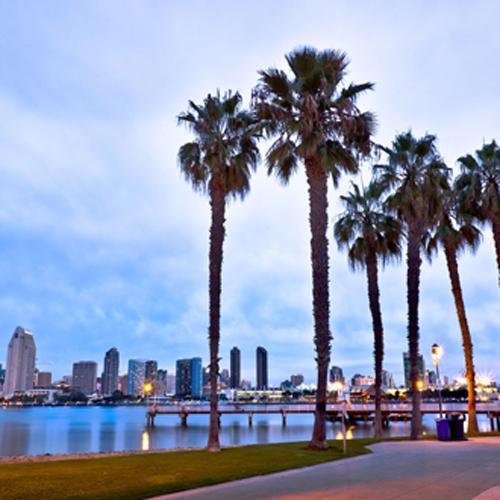 San Diego Location:  2739 Via Orange Way, Suite 102, Spring Valley, CA 91978