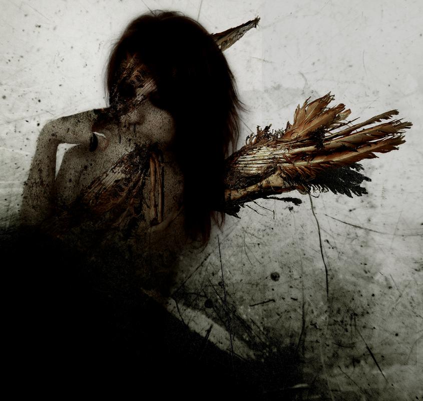 Locust Symbiont (2009)