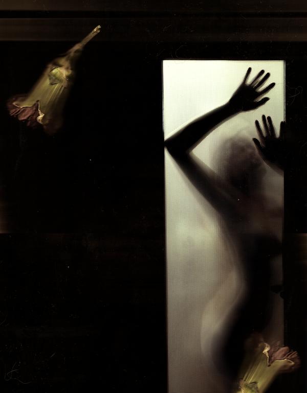 Press My Body, My Projection (2011)