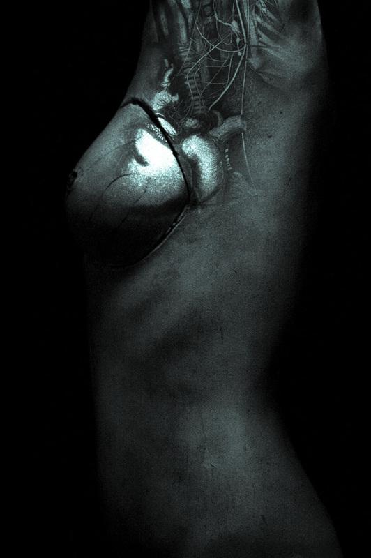 Piercing the Organic Veil (2012)