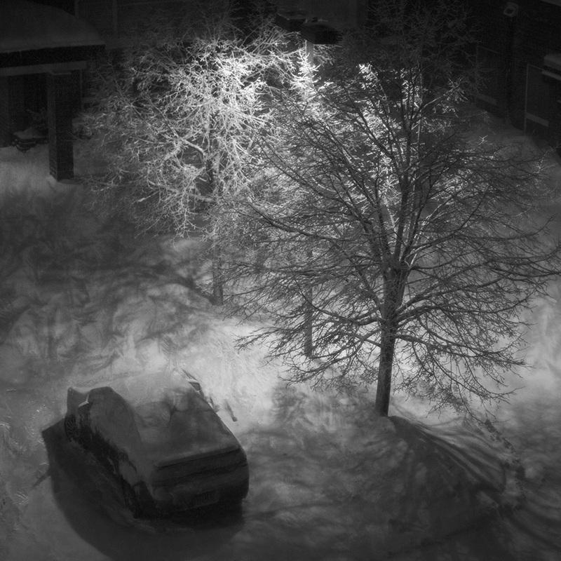 Tree & Car (2014)