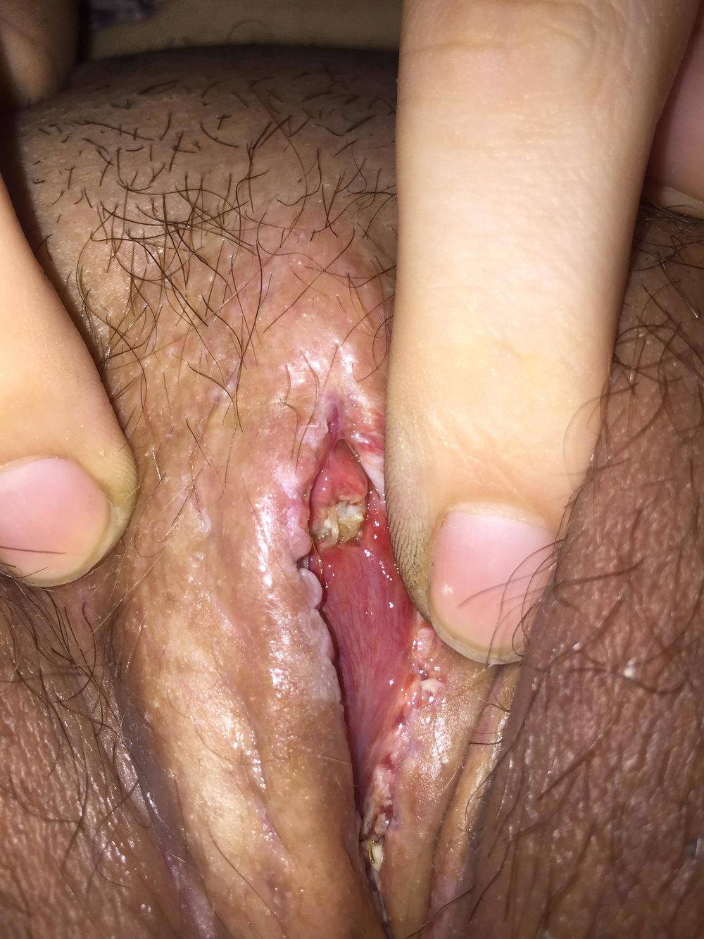 clitoris2.jpg