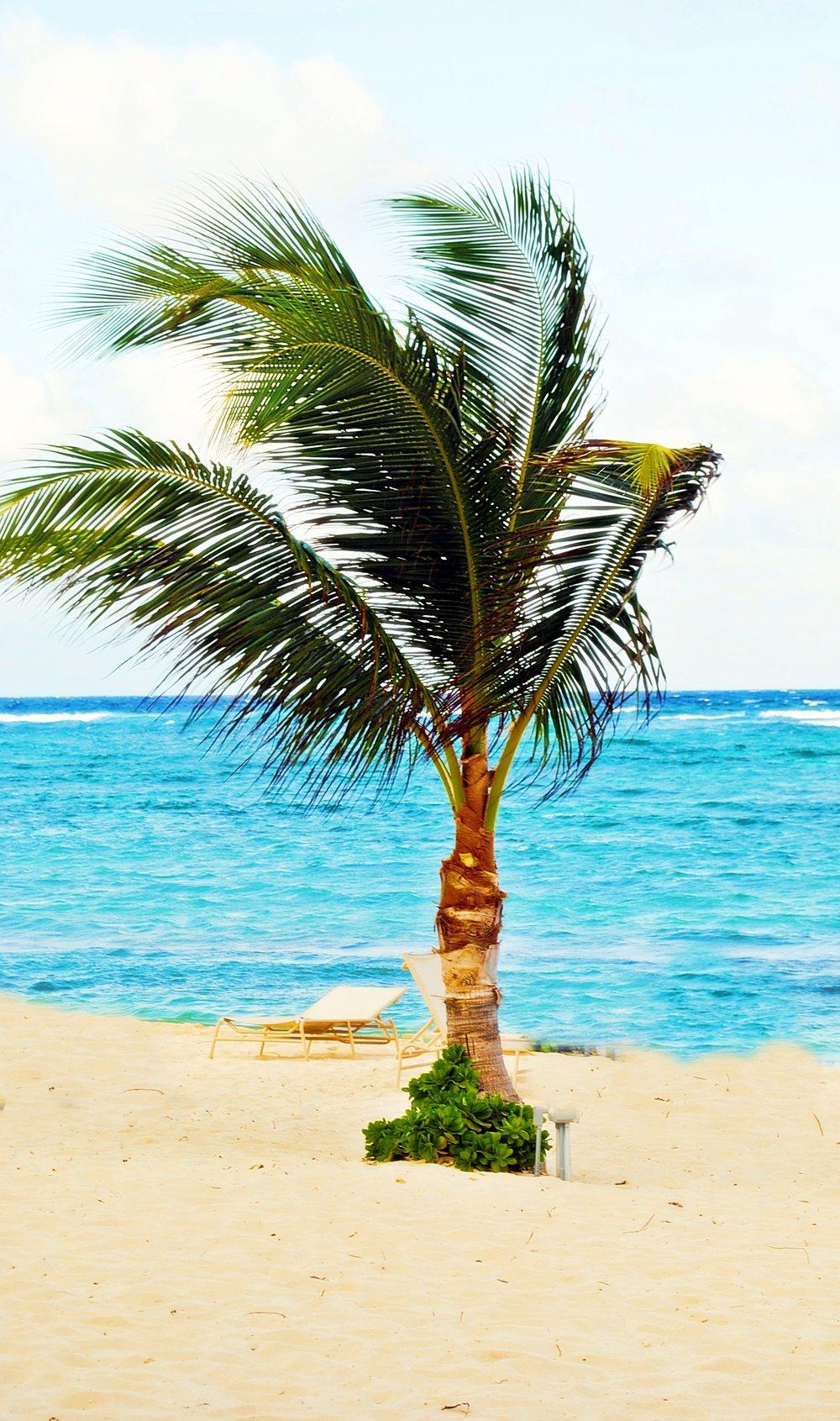 Cayman islands-carridean beach-Decorateur Chic-Glamorous family Travel.JPG