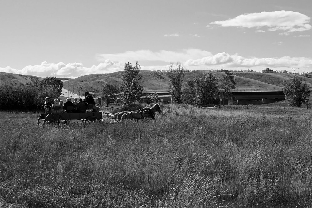 A wagon ride going around the pasture beside the Fort, with Whoop-Up Drive in the background.