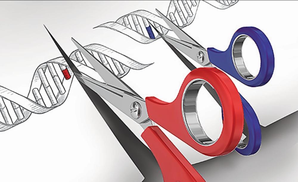 Genome Scissors