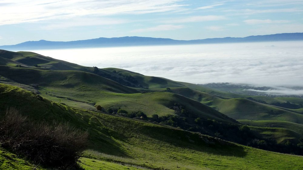 Santa Clara Valley in the Fog.jpg
