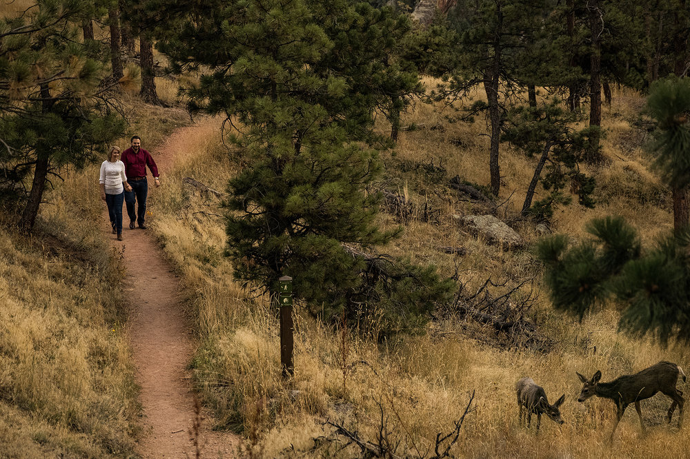 Couple walking down a trail in Colorado with deer grazing in the foreground