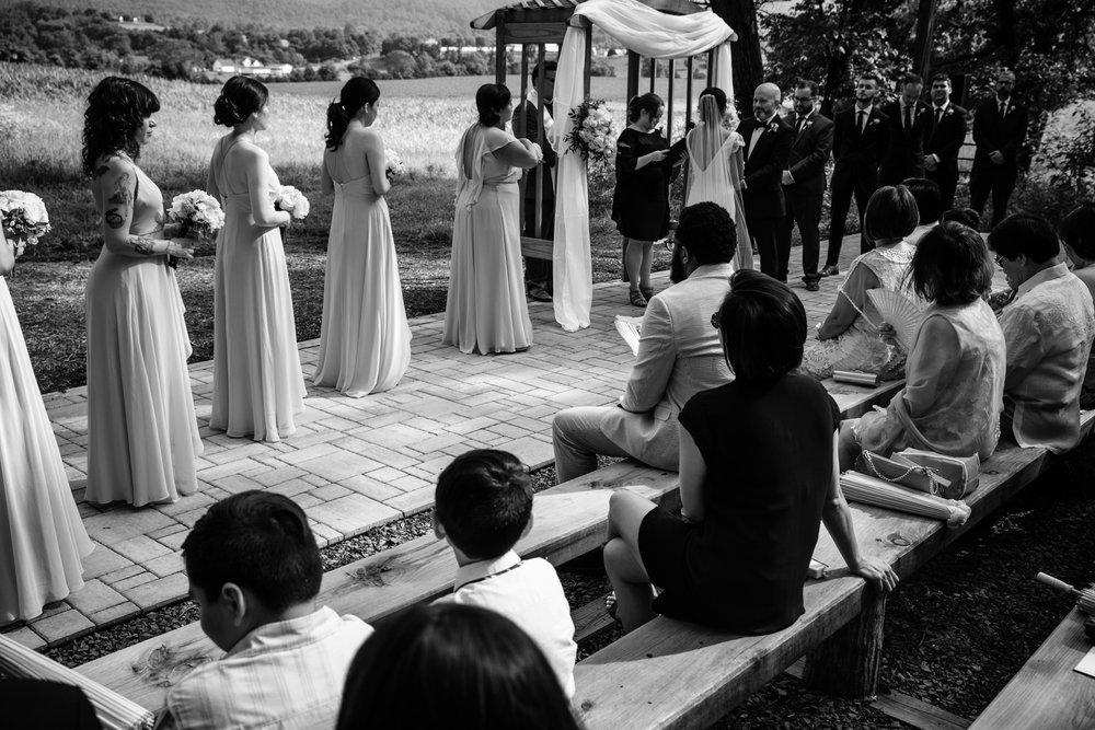 Danielle and Jim Shenandoah Valley Woods Wedding-25.jpg